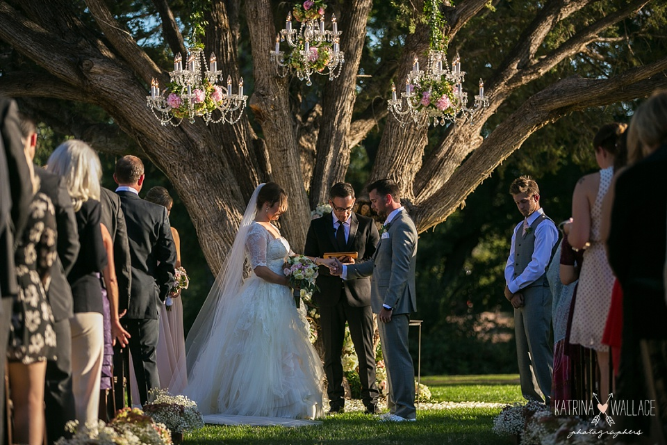 wedding ceremony under a tree at Dancing Apache